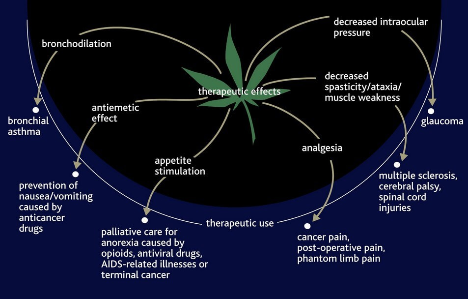 Potential Medical Benefits of Marijuana