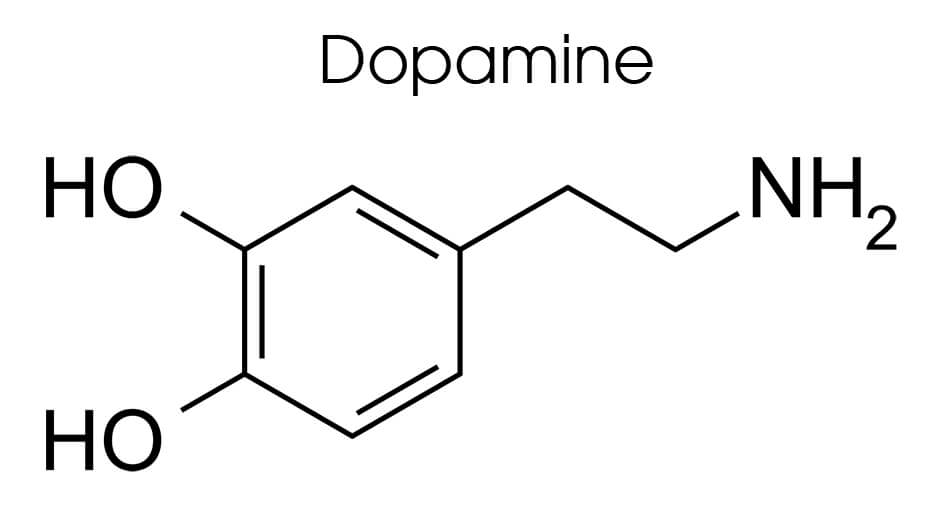 Dopamine Imbalance is the main role in the brain's reward system